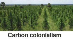 Öppet brev till Green Resources