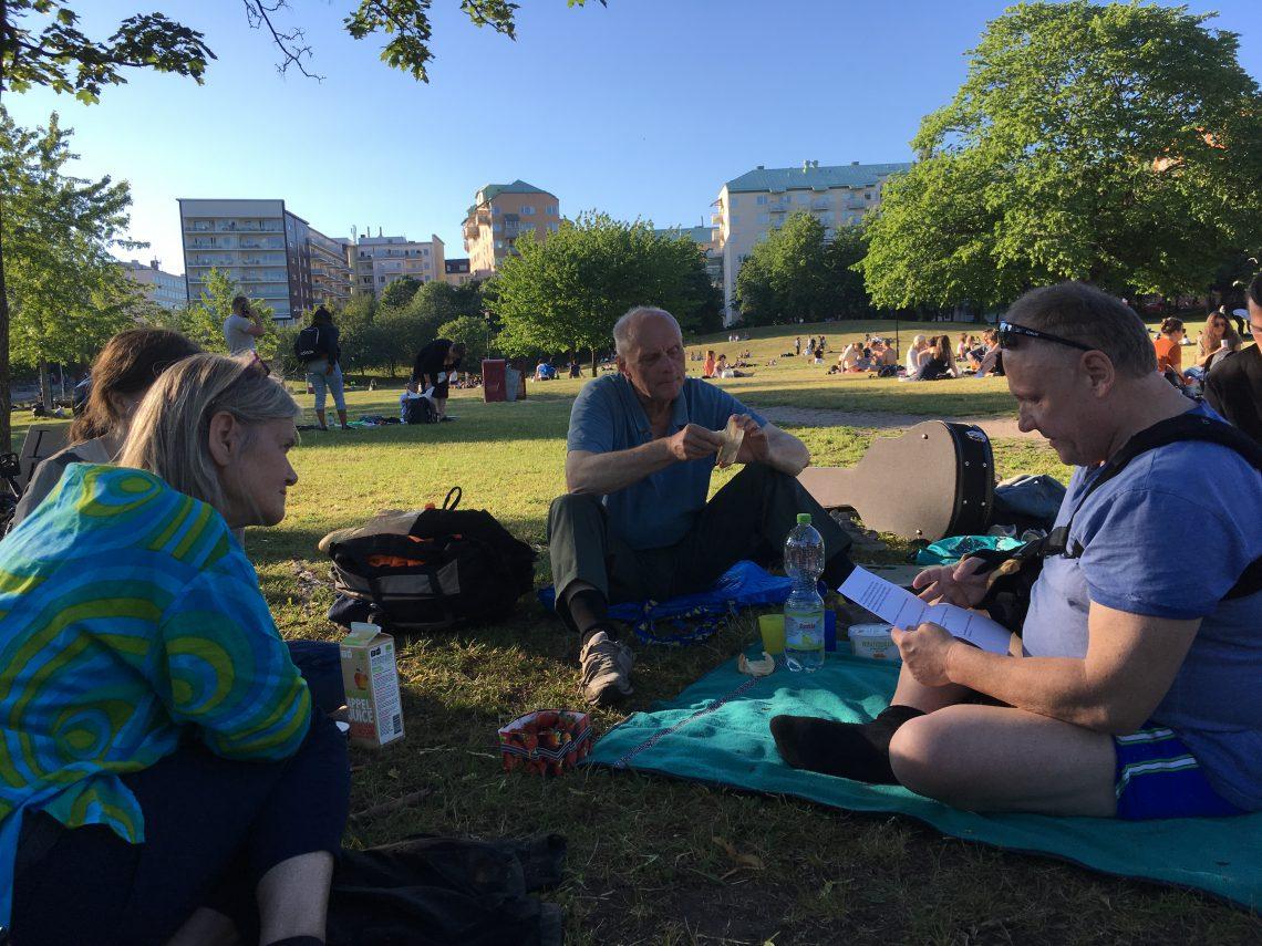 Picknick i Tantolunden, Stockholm, Klimataktion